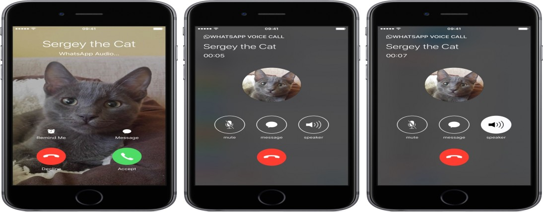 WhatsApp group call with up to 8 individuals now accessible on iOS